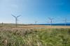 Wind-Farm-Hawaii-74