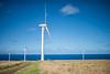Wind-Farm-Hawaii-1