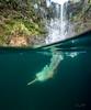 Hidden-Falls-Hilo-Hawaii-614