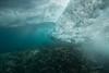 Two Step-Snorkeling-Hawaii-580