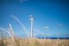 Wind-Farm-Hawaii-22