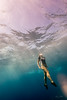 South-Point-Cliff-Jumping-Hawaii-218
