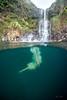 Hidden-Falls-Hilo-Hawaii-561