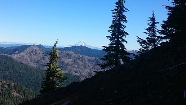 Mt Hood in the distance