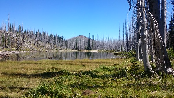 North Dixie Lake and Red Butte
