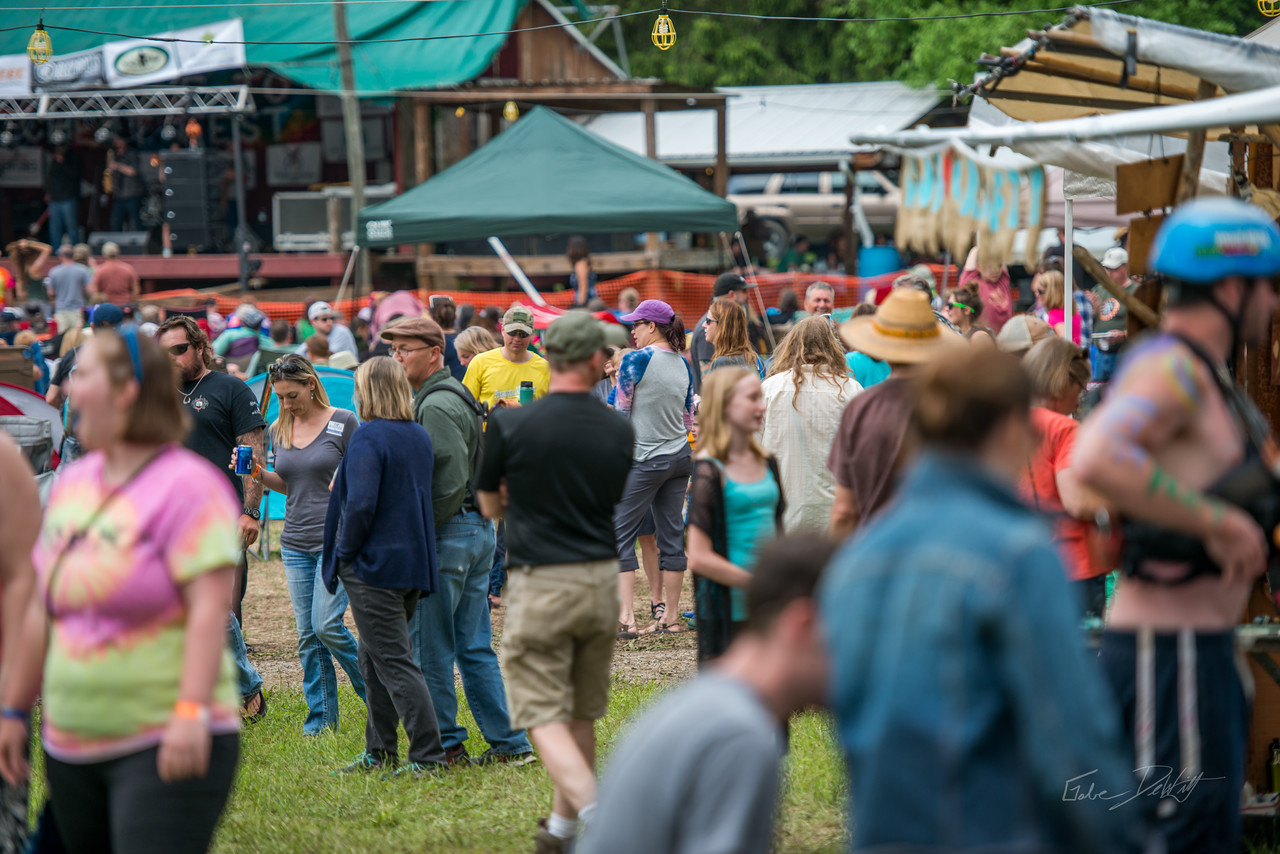 Cheat; River; Festival; 2016; Albright; 171; Cheat Fest; Cheat River; Cheat River Festival; Events; Friends; Friends of the Cheat; Music; Places; West Virginia; photo by Gabe DeWitt; spring