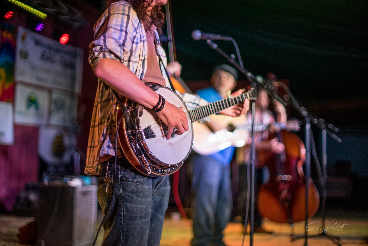 Cheat; River; Festival; 2016; Albright; 290; Cheat Fest; Cheat River; Cheat River Festival; Events; Friends; Friends of the Cheat; Music; Places; West Virginia; photo by Gabe DeWitt; spring