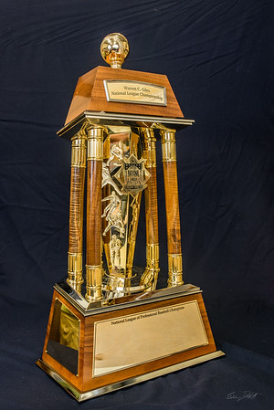 National_League_Championship_trophy_Shimrock_Wood_Art-5