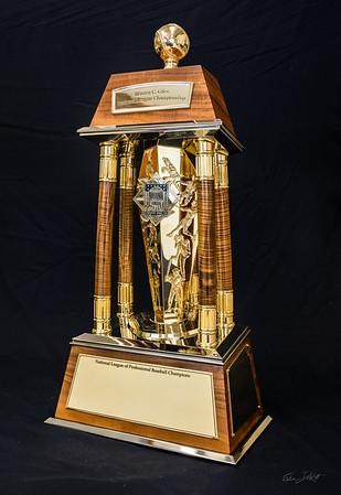 National_League_Championship_trophy_Shimrock_Wood_Art-11