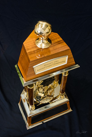 National_League_Championship_trophy_Shimrock_Wood_Art-15