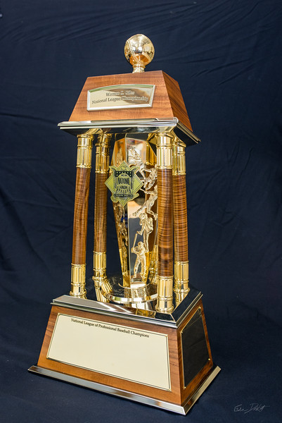 National_League_Championship_trophy_Shimrock_Wood_Art-2