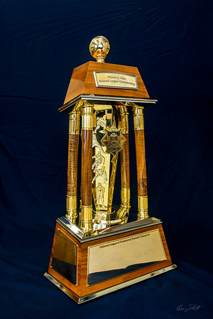 National_League_Championship_trophy_Shimrock_Wood_Art-4-2