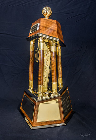 National_League_Championship_trophy_Shimrock_Wood_Art-10