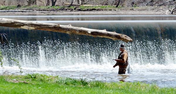 0417 tree fisherman