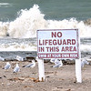 0929 seagull lifeguard