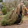 1203 christmas tree shopping 1
