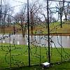 0113 wet park 4