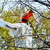 0517 tree man