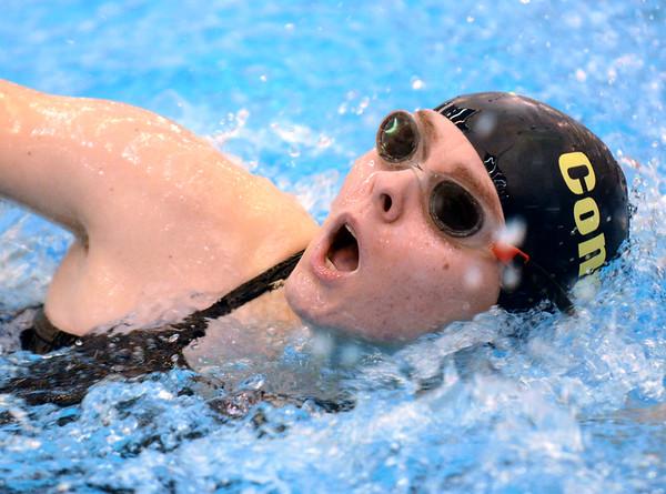 1202 pv swim 9