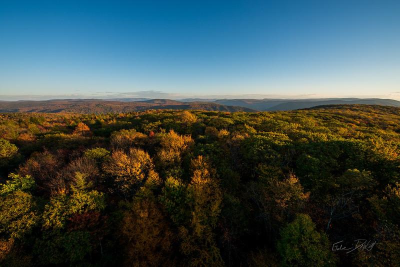 Olson-Observation-Tower-Monogahela-National-Forest-WV-14