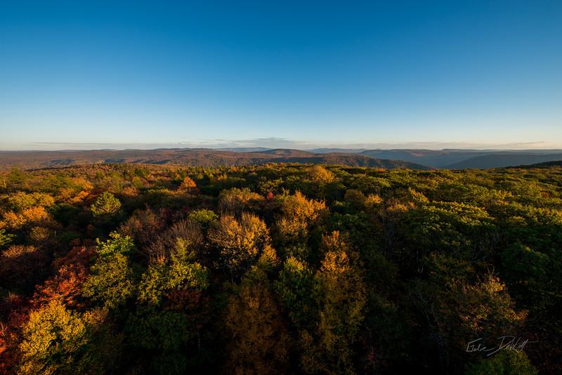 Olson-Observation-Tower-Monogahela-National-Forest-WV-15
