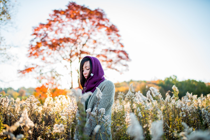 Tara-Smith-October-Morning-Autumn-Tree-West-Virginia-15