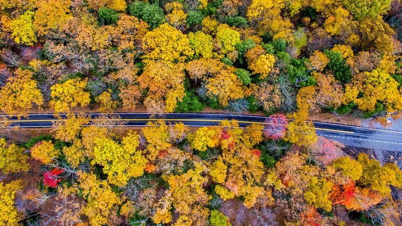 Above-Coopers-Rock-West-Virginia-Drone-2