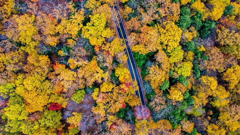 Above-Coopers-Rock-West-Virginia-Drone-4