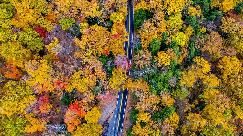 Above-Coopers-Rock-West-Virginia-Drone-9
