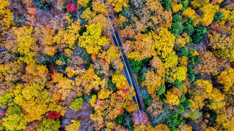 Above-Coopers-Rock-West-Virginia-Drone-3
