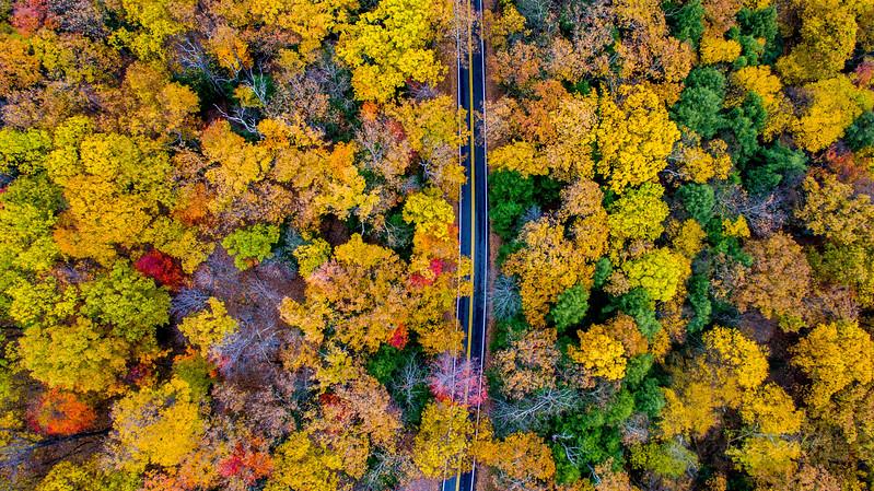Above-Coopers-Rock-West-Virginia-Drone-11