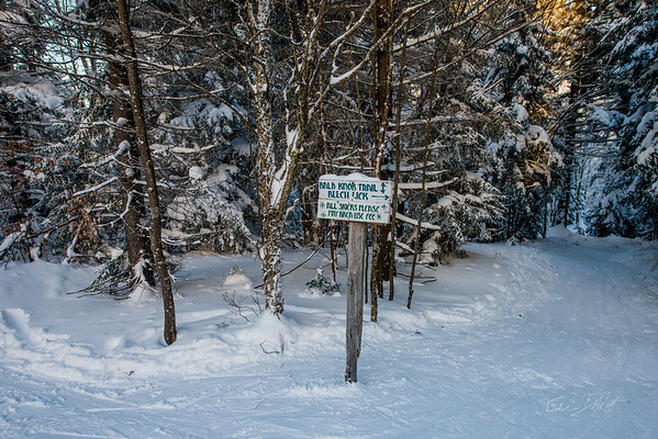 Cross-Country-Skiing-White-Grass-Canaan-Valley-West-Virginia-New-Years-Eve-43
