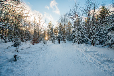 Cross-Country-Skiing-White-Grass-Canaan-Valley-West-Virginia-New-Years-Eve-42