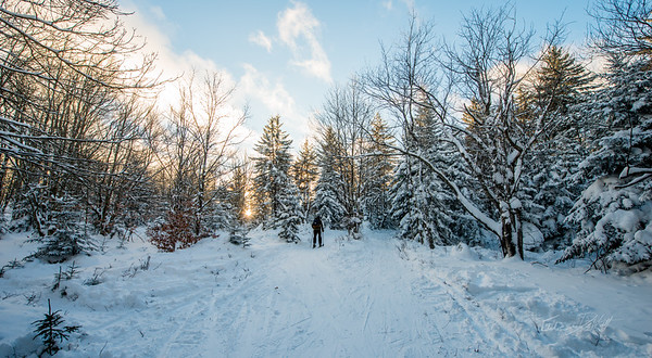 Cross-Country-Skiing-White-Grass-Canaan-Valley-West-Virginia-New-Years-Eve-41