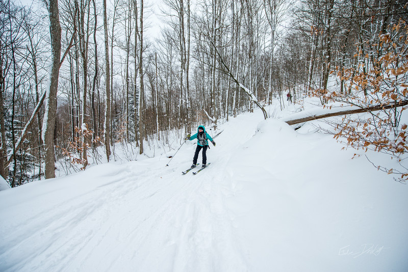 Cross-Country-Skiing-White-Grass-Canaan-Valley-West-Virginia-New-Years-Eve-31