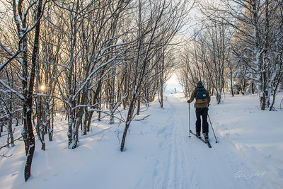 Cross-Country-Skiing-White-Grass-Canaan-Valley-West-Virginia-New-Years-Eve-47