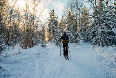 Cross-Country-Skiing-White-Grass-Canaan-Valley-West-Virginia-New-Years-Eve-39