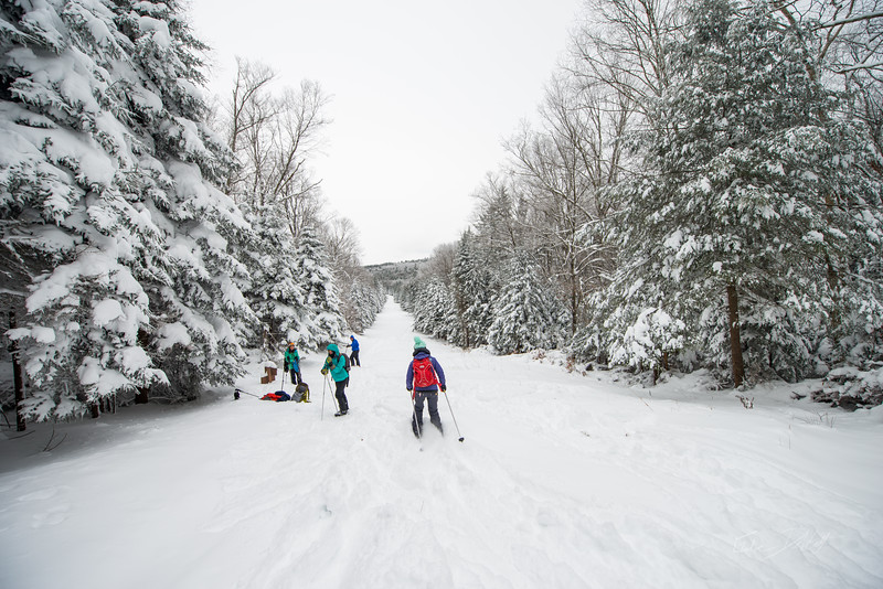 Cross-Country-Skiing-White-Grass-Canaan-Valley-West-Virginia-New-Years-Eve-11