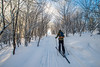 Cross-Country-Skiing-White-Grass-Canaan-Valley-West-Virginia-New-Years-Eve-46