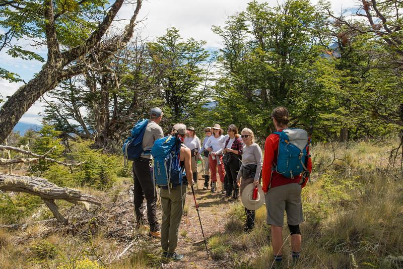Lago-Chico-Conservacion-Patagonica-Chile-Summer-2017-156-_GRD3139