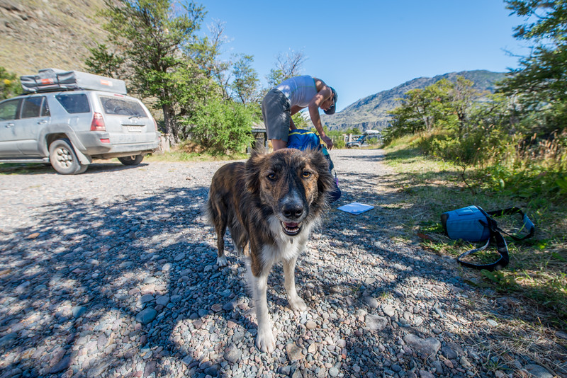Aviles-Valley-Conservacion-Patagonica-Chile-Summer-2017-13-_GRD3398