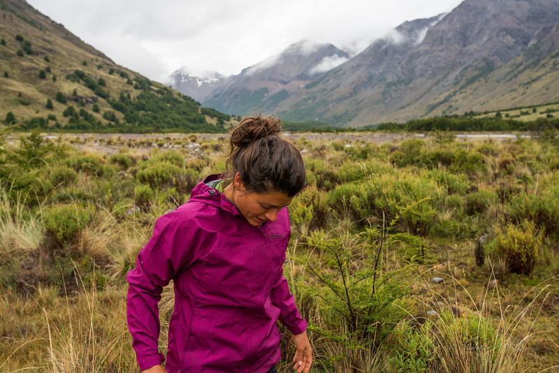 Aviles-Valley-Conservacion-Patagonica-Chile-Summer-2017-152-_GRD3560