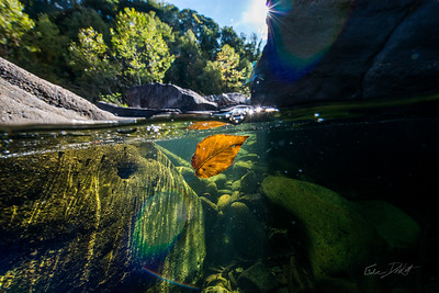 Squirt-Boating-the-Alley-Cheat-River-WV-66