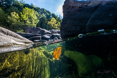 Squirt-Boating-the-Alley-Cheat-River-WV-70