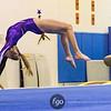 Minneapolis Washburn v St. Paul Como Park and St Paul Johnson v Minneapolis Southwest Gymnastics  on 11 January 2017