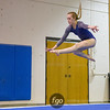 Minneapolis Washburn v St. Paul Como Park and St Paul Johnson v Minneapolis Southwest Gymnastics  on 11 January 2017