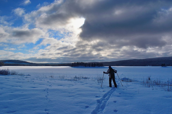 Skidåkare vid Agnsjön -  Cross country skier at the shore of a frozen lake