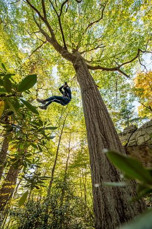 Climbing-Coopers-Rock-Adventure-WV-76