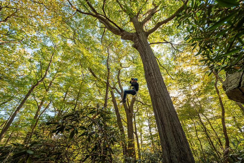 Climbing-Coopers-Rock-Adventure-WV-67