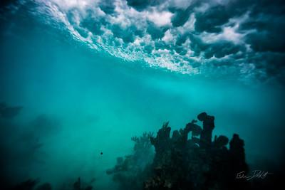 Arrecife-Francisco I-Madero-Snorkeling-Playa-del-carmen-Mexico-Gabe-DeWitt-470